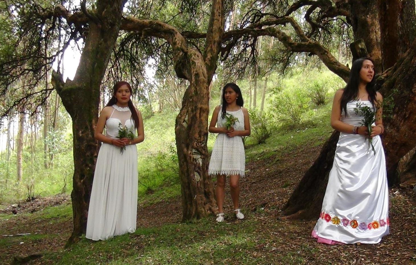 Matrimonio Simbolico En Peru : Mexicanos se casan con árboles en oaxaca y piden respeto hacia