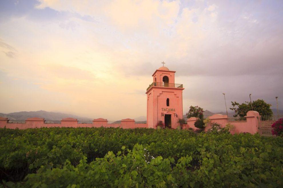 Tacama: experiencias enológicas y bodegas añejas a un pasito de Lima –  Rumbos de Sol & Piedra